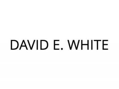 david-e-white-logo2